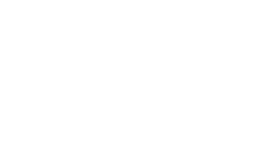 Bridge Therapy